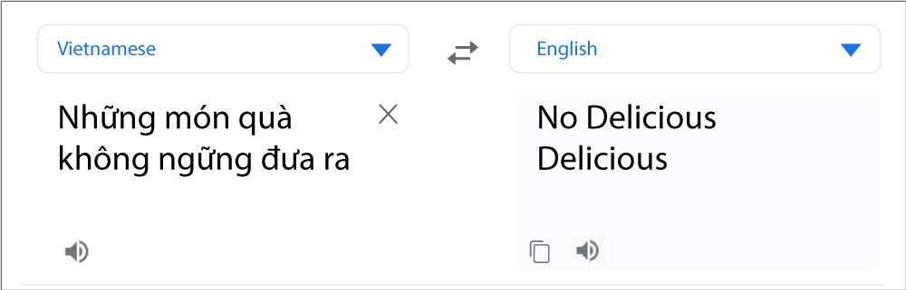 Professional Website Translation
